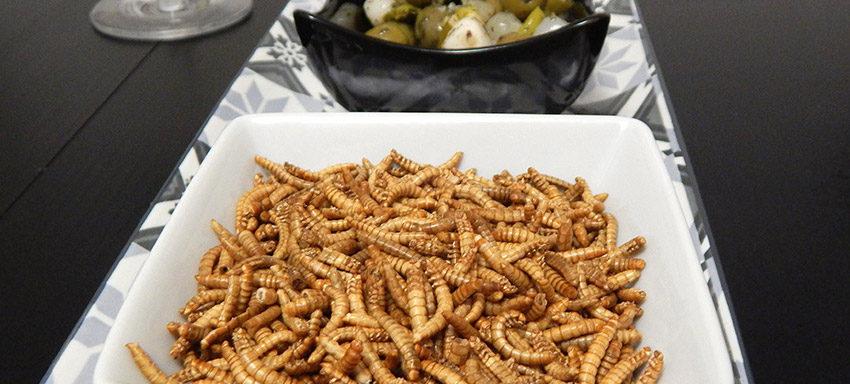 futura-food-pourquoi-manger-des-insectes