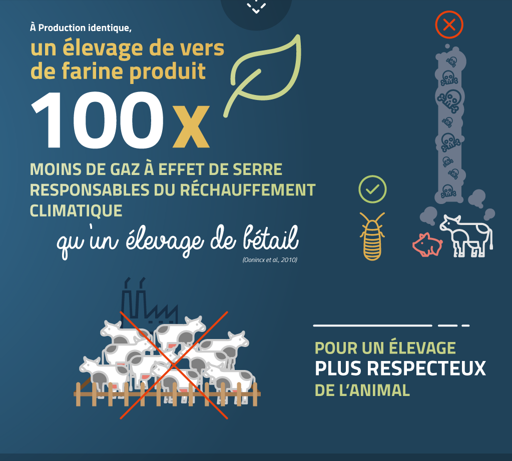 futurafood_dijon_pourquoi_entomophagie_infographie9